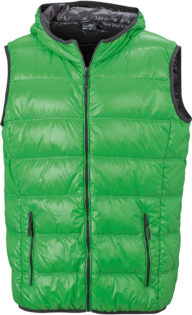 Men s Down Vest - green/carbon