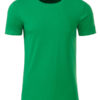 Mens Basic T James & Nicholson - fern green