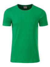 Mens Basic T James & Nicholson - fern green